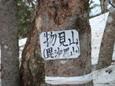 Dsc03395