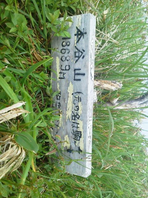 20140620中尾ツルネ〜本谷山